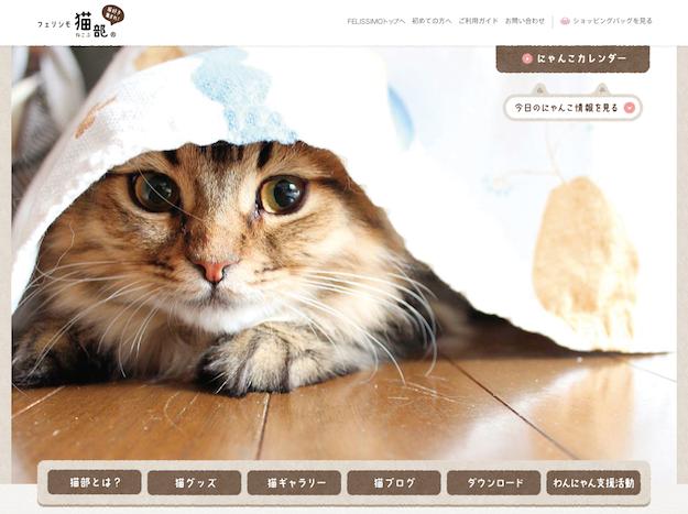 たまらんニャー!ただ、ひたすらニヤニヤするための猫サイトまとめ!