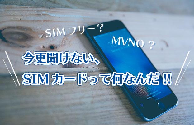 SIMフリー?MVNO?今更聞けない、SIMカードって何なんだ !!